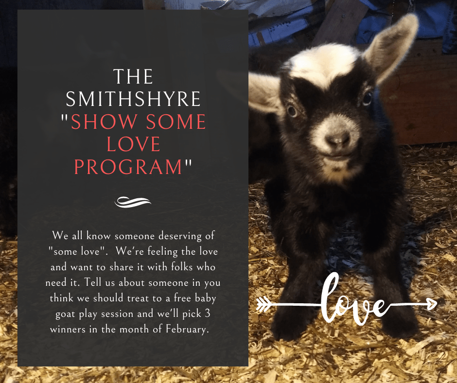show some love, baby goats, need based, cuddle, laugh